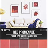 """ColorBok 73473B Smooth Cardstock Paper Pad Red Promenade, 12"""" x 12"""",73473A"""