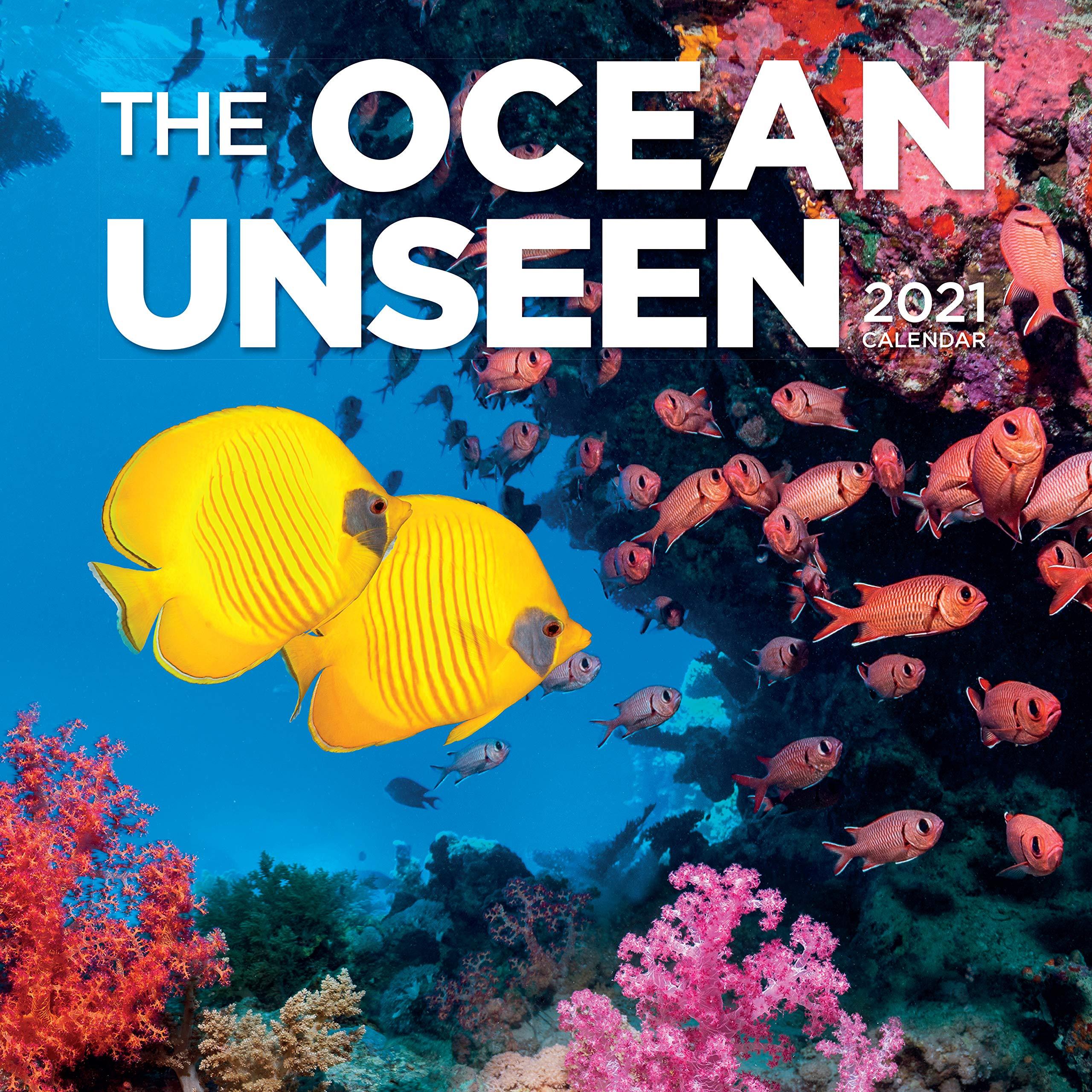Reef Calendar 2021