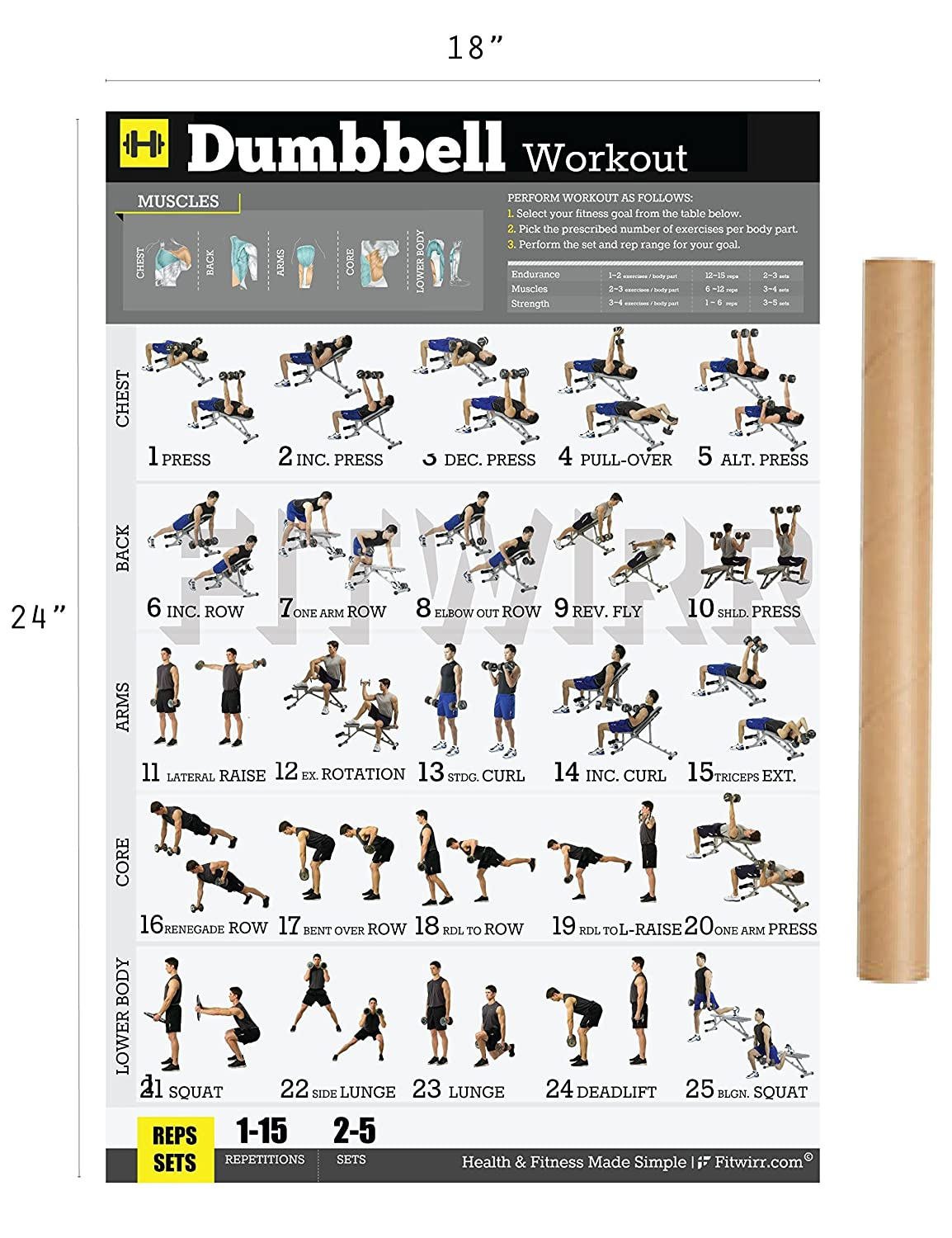 Dumbbell Exercises Workout Poster - Now Laminated - Home Gym - Workout  Plans for Men - Free Weights - Strength Training Routines - Build Muscles -  Fat