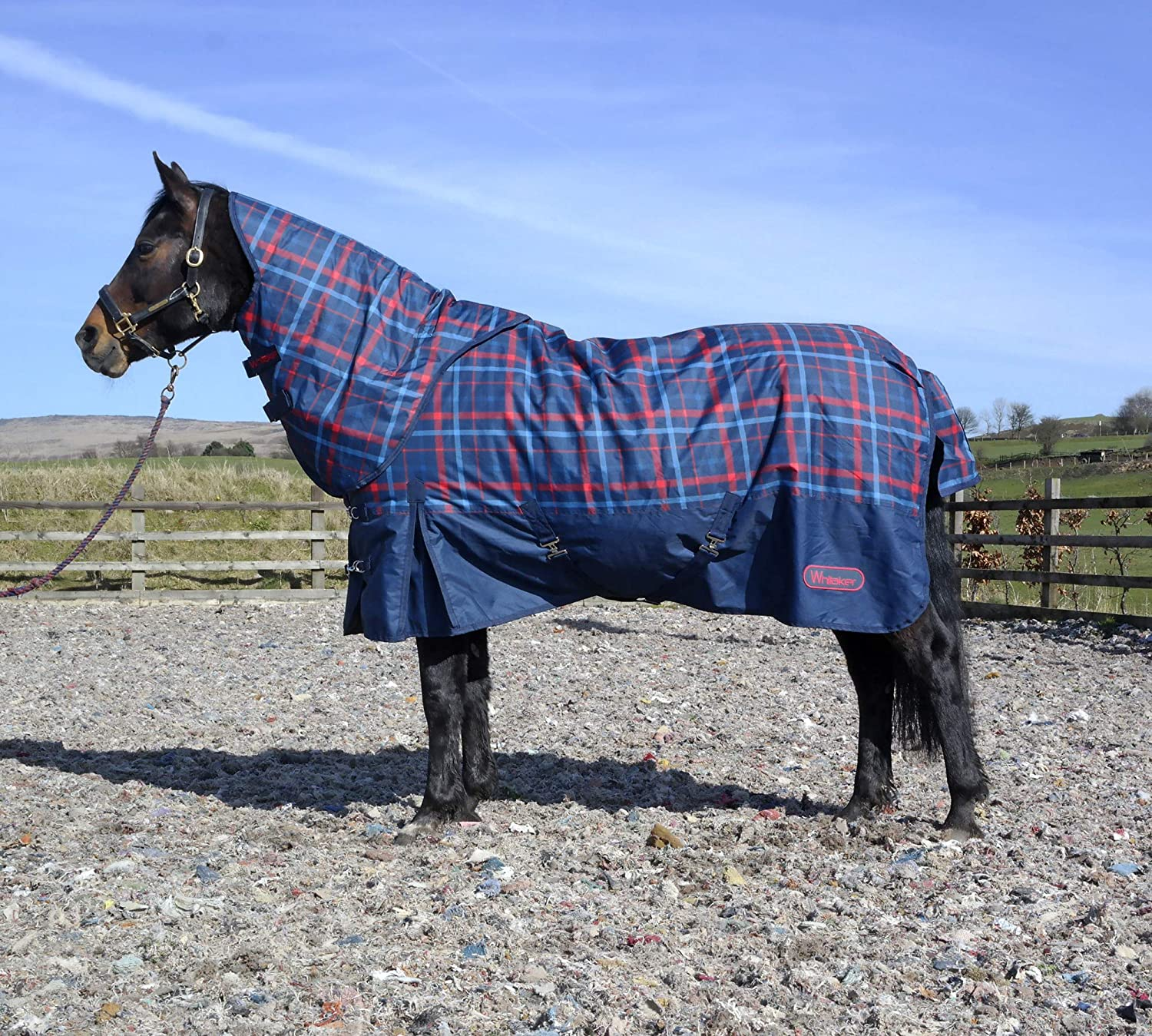 6'3 John Whitaker Combo 200g Turnout Horse Rug with Hood (6'3)