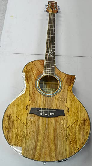Ibanez Exotic Wood Series 6 String Acoustic Electric Guitar Right Handed EW20SGE NT