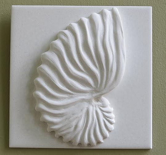 Amazon Com Nautilus Shell Decorative Tile Handmade