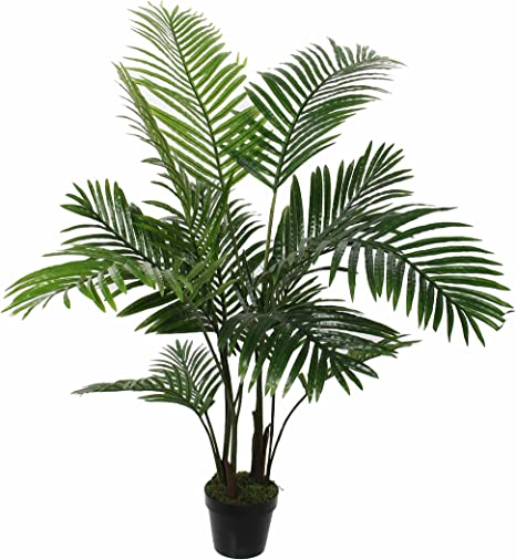 Areca Palm Tree In Plastic Pot Height 120 X Diameter 60 Cm Amazon De Küche Haushalt