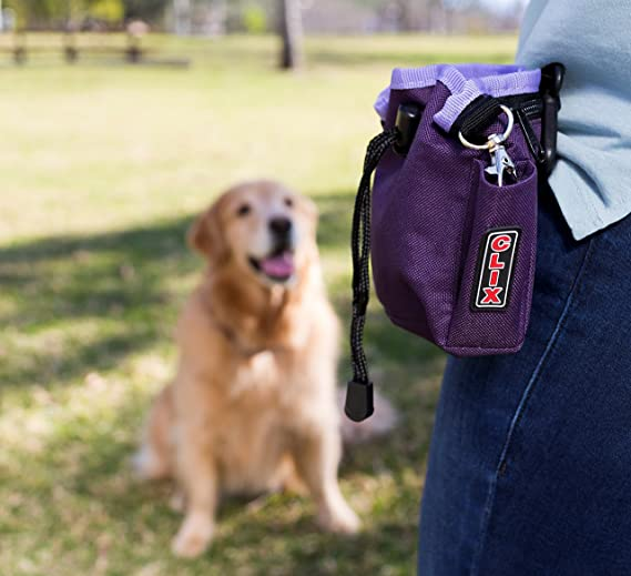 The Company of Animals Treat bag combat: Amazon.es: Productos para mascotas