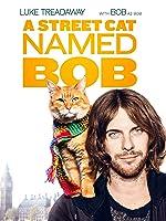 Bbfc Street Cat Named Bob