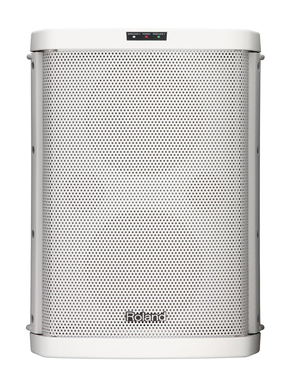 Roland ローランド バッテリー パワード ポータブル アンプ BA-55-WH ホワイト B0051SFCJA ホワイト