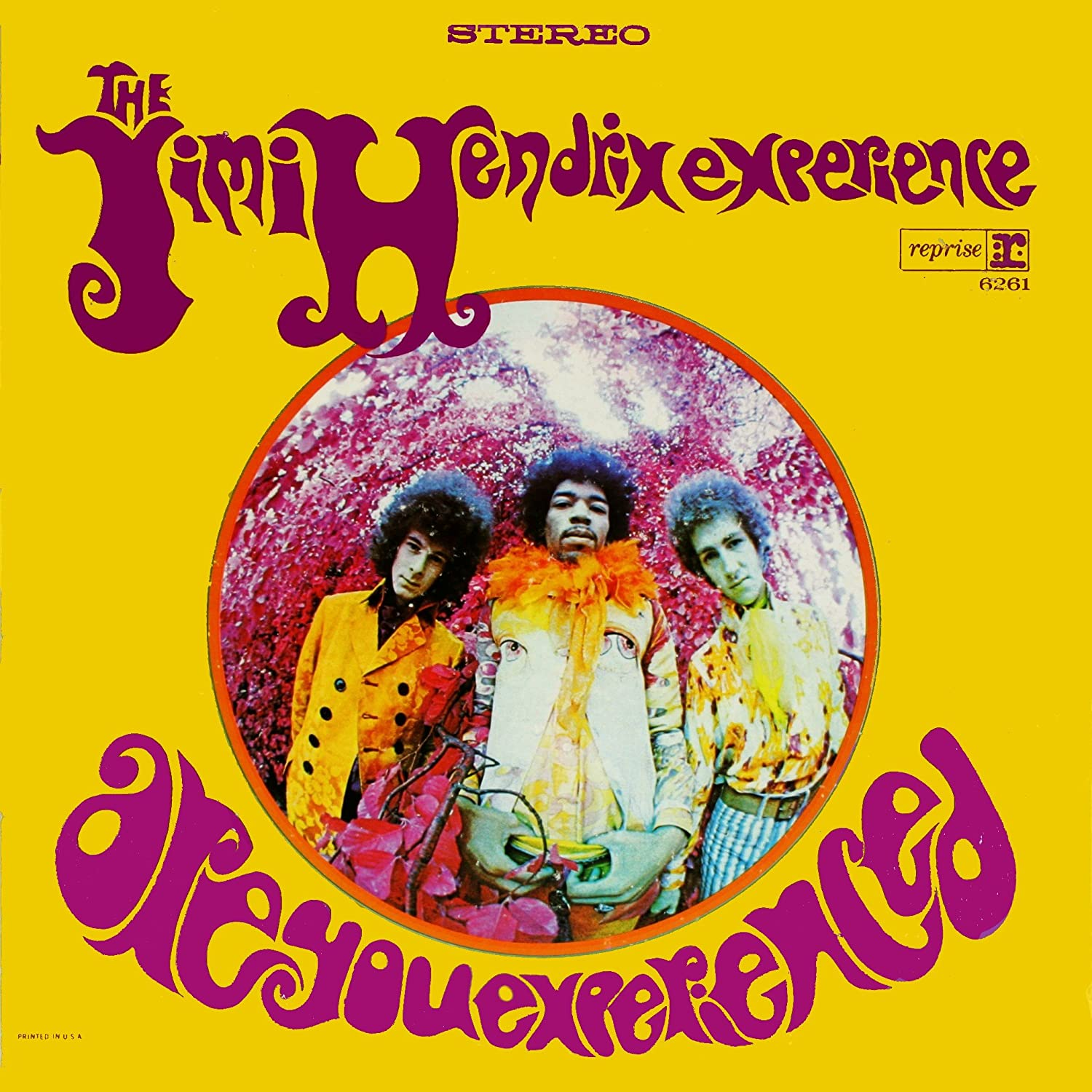 Jimi Hendrix Are You Experienced Album Cover Poster Art Photo Rock Music Posters Photos 12x12