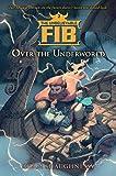 The Unbelievable FIB 2: Over the Underworld