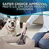 Bissell Professional Pet Urine Eliminator + Oxy