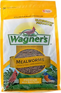 Wagner's 58005 Mealworms Wild Bird Food, 18-Ounce Bag
