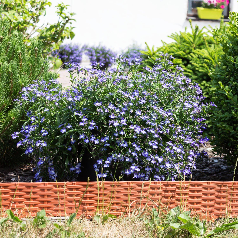 Palissade Garden Ratan Rotin 3,9 m bordure jardin decoration terre ...