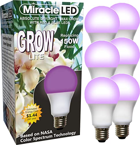 MiracleLED 604892 Miracle LED MAX Blue Grow Light, 6-Pack, Red Blue Spectrum 150W, 6 Count
