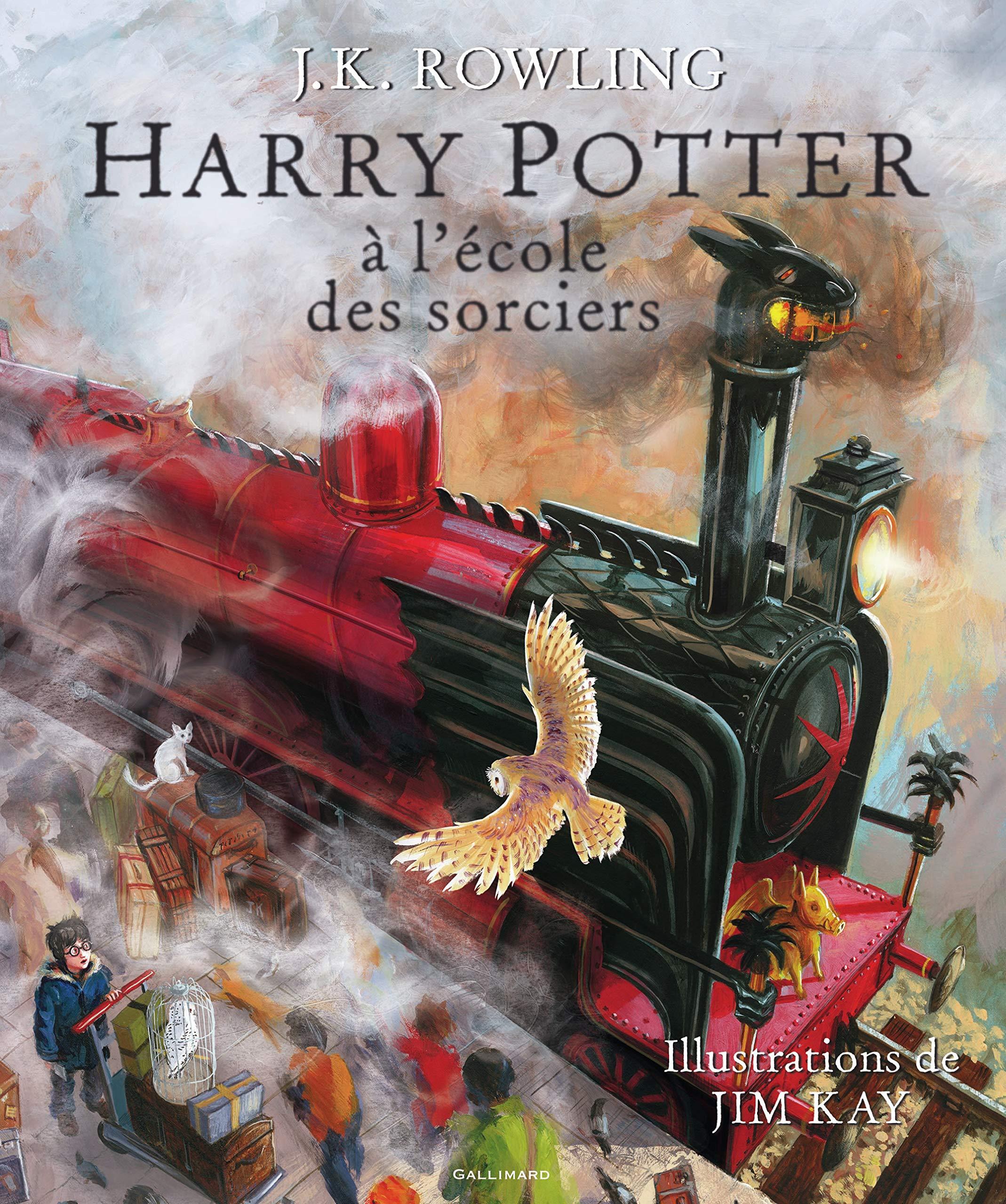 Amazon.fr - Harry Potter à l'école des sorciers - Beau-livre collector -  Rowling, J.K., Kay, Jim, Ménard, Jean-François - Livres