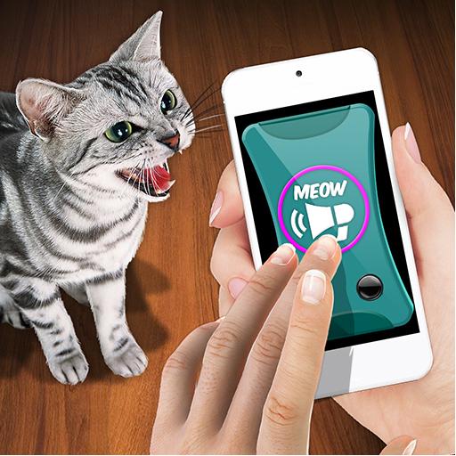 Training Cat Trinket Clicker ()