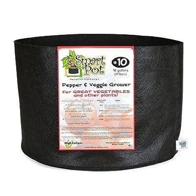 High Caliper Growing Smart Pot Pepper and Veggie Grower with DSP Box, 10-Gallon, Black: Garden & Outdoor