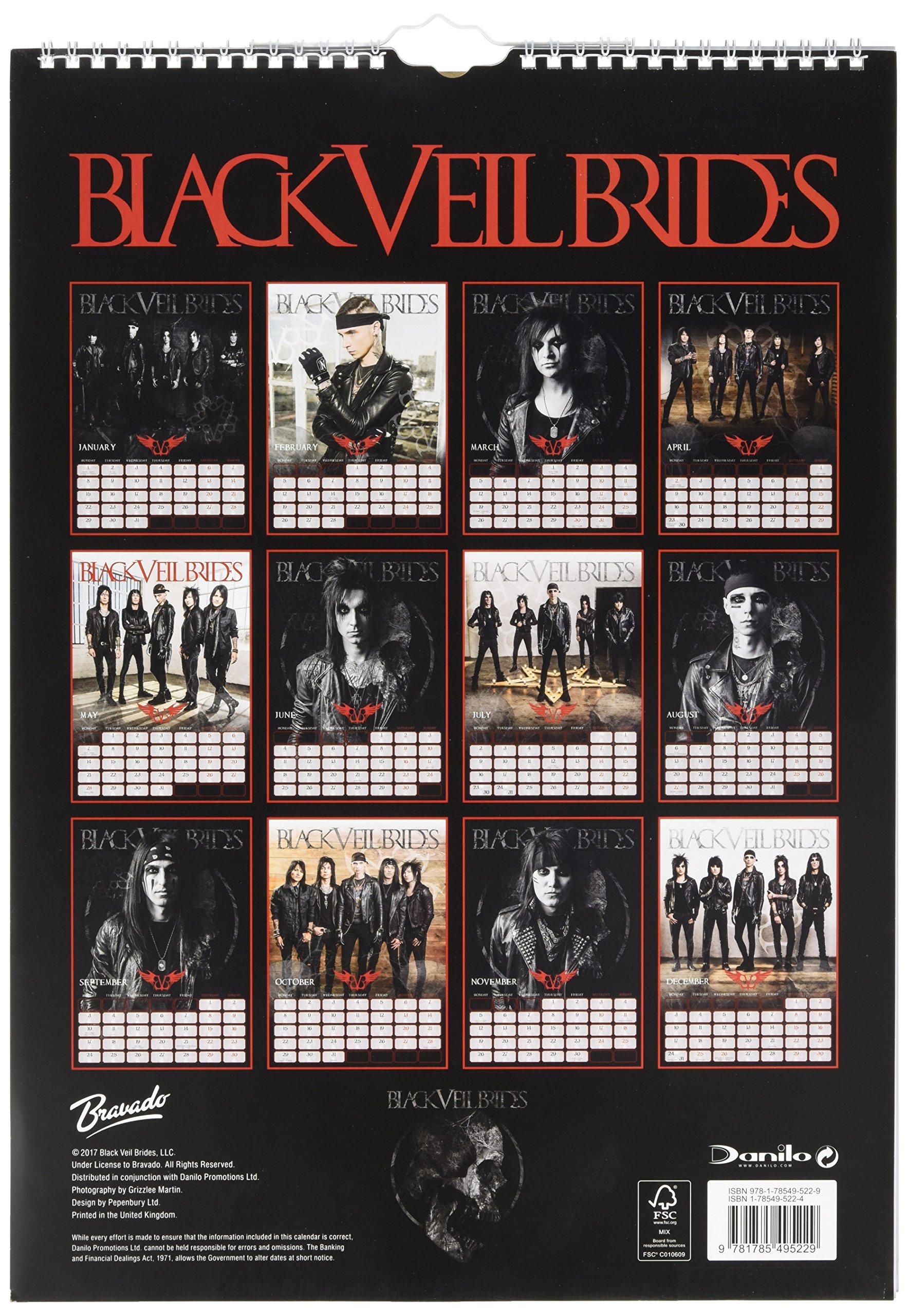 Black Veil 2018