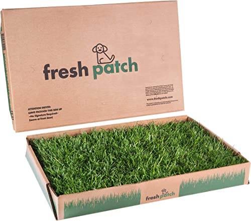 Fresh-Patch-Disposable-Dog-Potty-with-Real-Grass