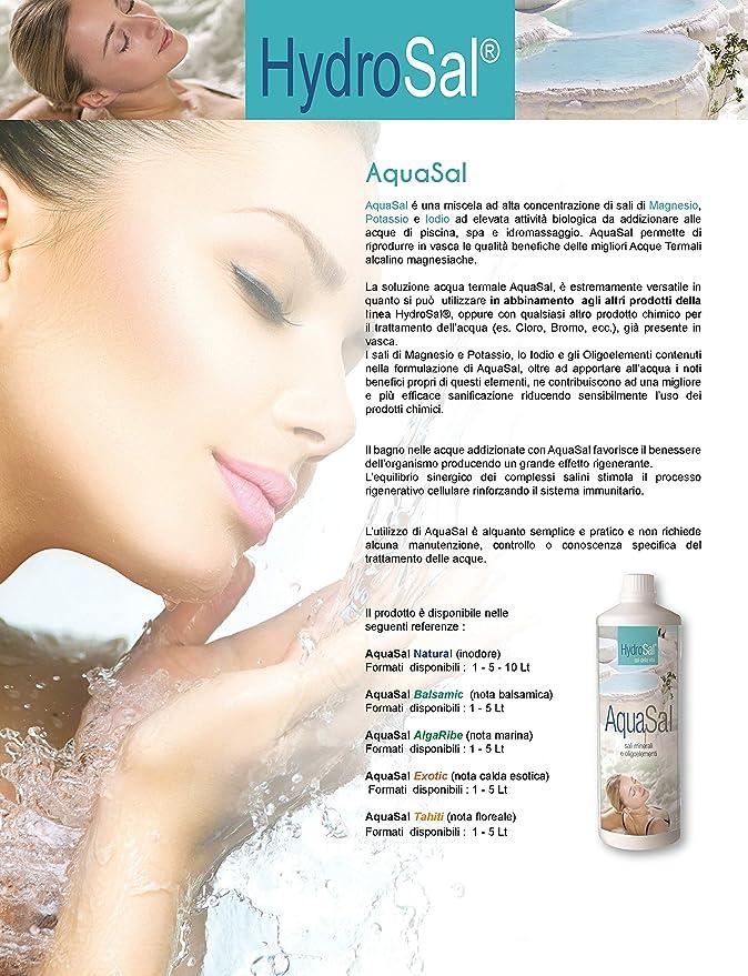 HydroSal oxígeno Activo en Pastillas de 100 g – DisySal 100 Tab 1 ...
