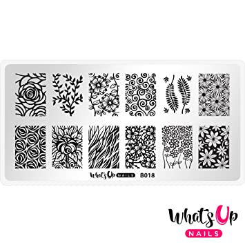Amazon.com : Whats Up Nails - B018 Fields of Flowers Stamping Plate ...