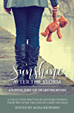 Sunshine After the Storm: A Survival Guide for Grieving Mothers