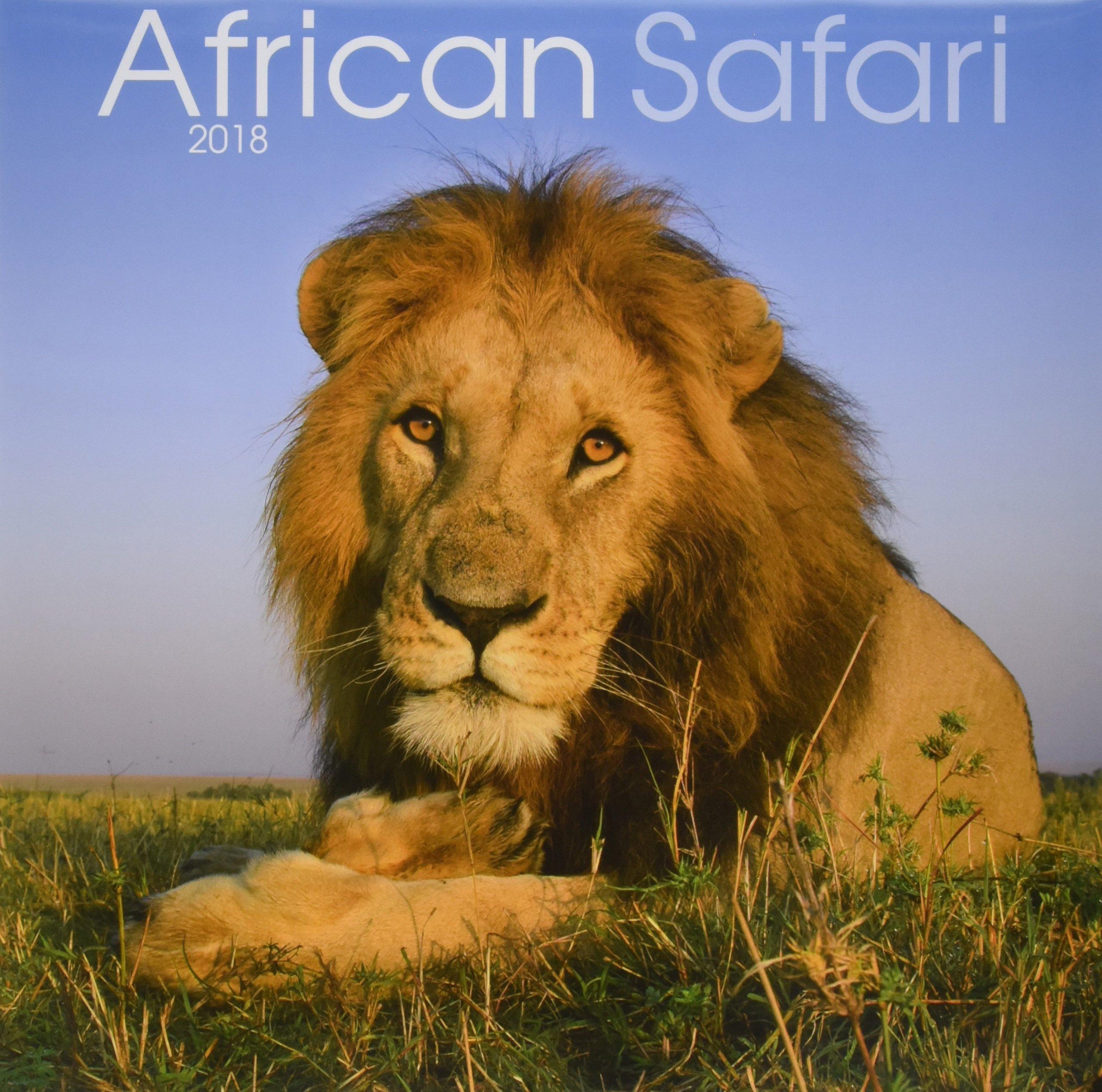 Read Online African Safari 2018 Calendar pdf epub
