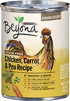 Purina Beyond Grain Free, Natural Gravy Wet Dog Food and Grain Free Beef & Spinach Recipe - (12) 12.5 oz