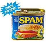 """BigMouth Inc SPAM Can Safe - Great Hiding Place for Storing Valuables, 3"""" x 3"""" x"""