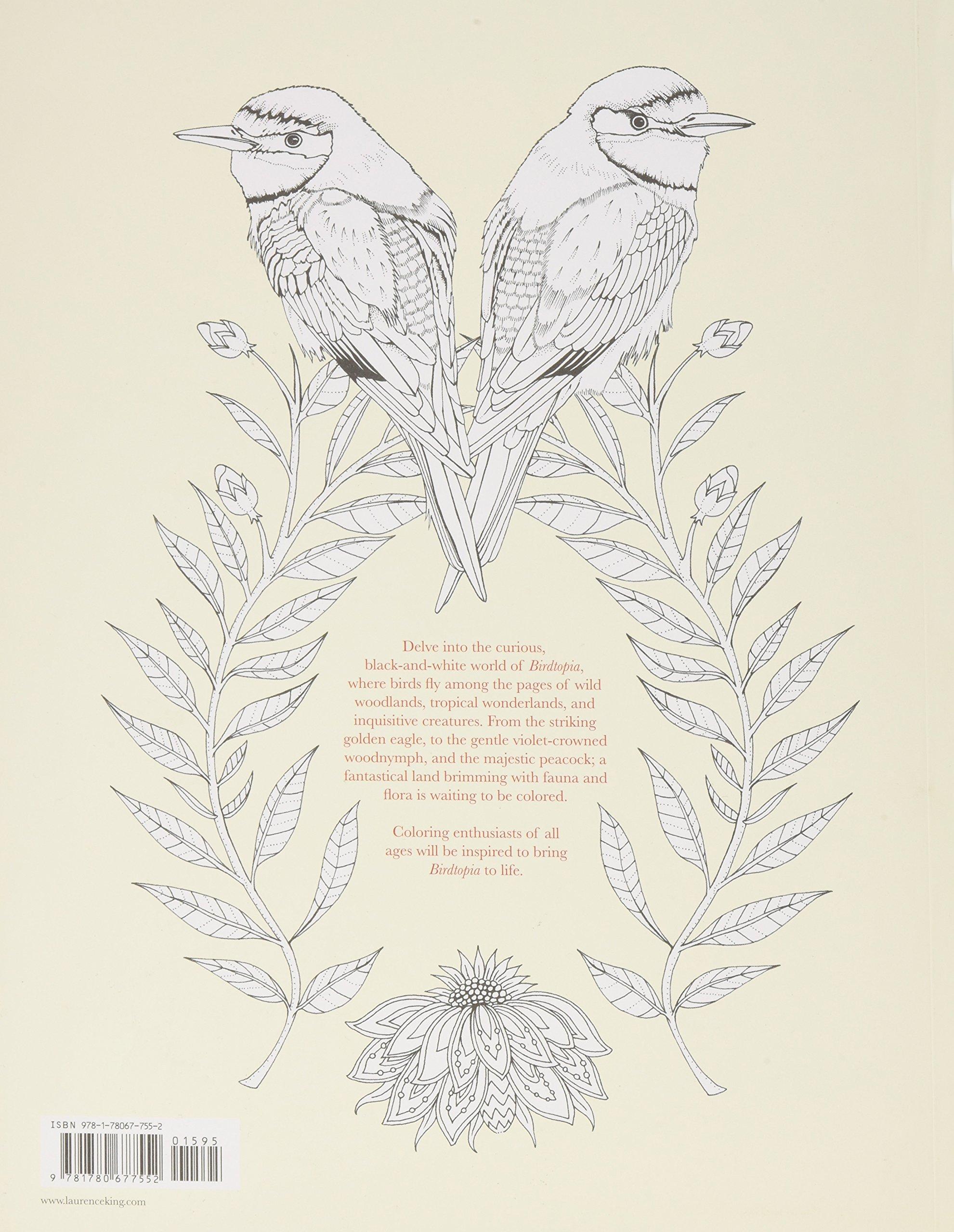amazon com birdtopia coloring book 9781780677552 daisy