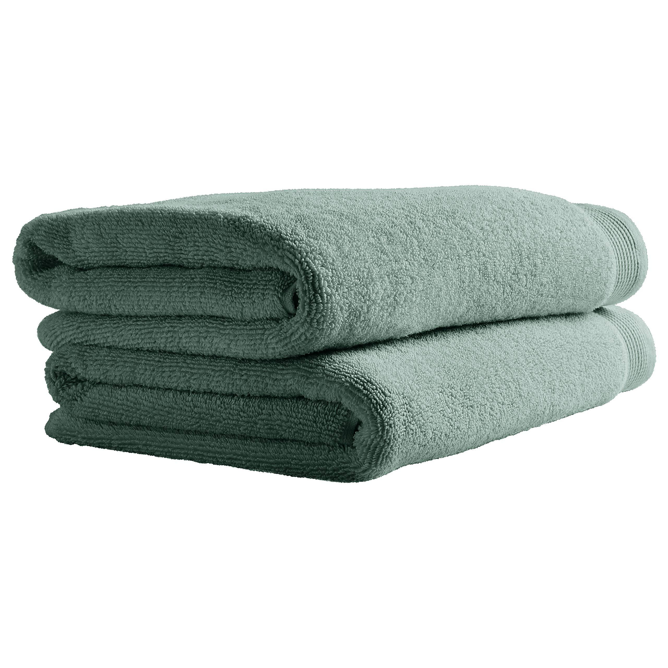 Stone & Beam Organic Cotton Bath Towels, Set of 2, Lagoon
