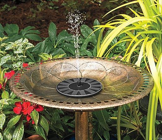 The Paragon Bomba de Fuente Solar, Fuente de Agua para pájaros con energía Solar, Kit de Bomba de Fuente Flotante para Exteriores, para jardín, Piscina, Estanque, decoración de Patio: Amazon.es: Jardín