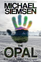 The Opal (Matt Turner Series Book 2) Kindle Edition