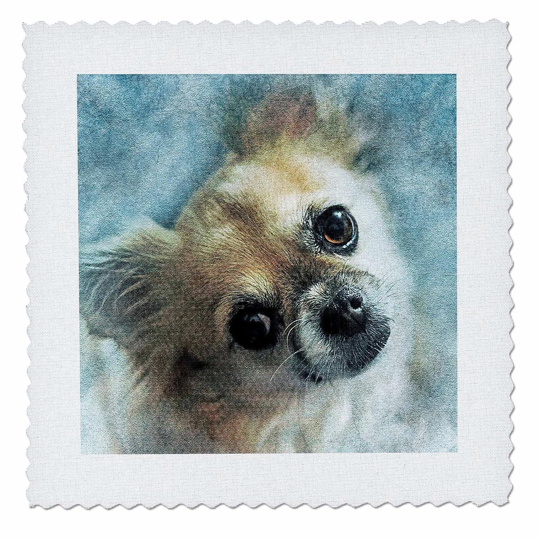 3dRose Sven Herkenrath Animal - Dog Portrait - 18x18 inch quilt square (qs_280293_7)
