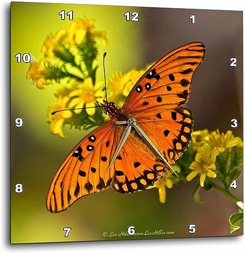 3dRose Lee Hiller Photography Hot Springs National Park Butterflies and Moths – Gulf Fritillary Butterfly on Goldenrod – 15×15 Wall Clock DPP_35725_3