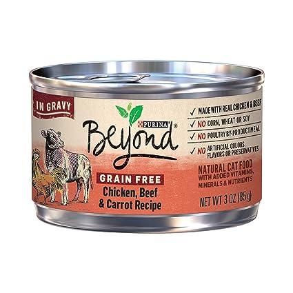 Amazoncom Purina Beyond Grain Free Natural Chicken Beef