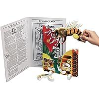"Book Plus Bee Life Cycle Foam Model, 10"" x 14.5"" x 0.75"" Size"