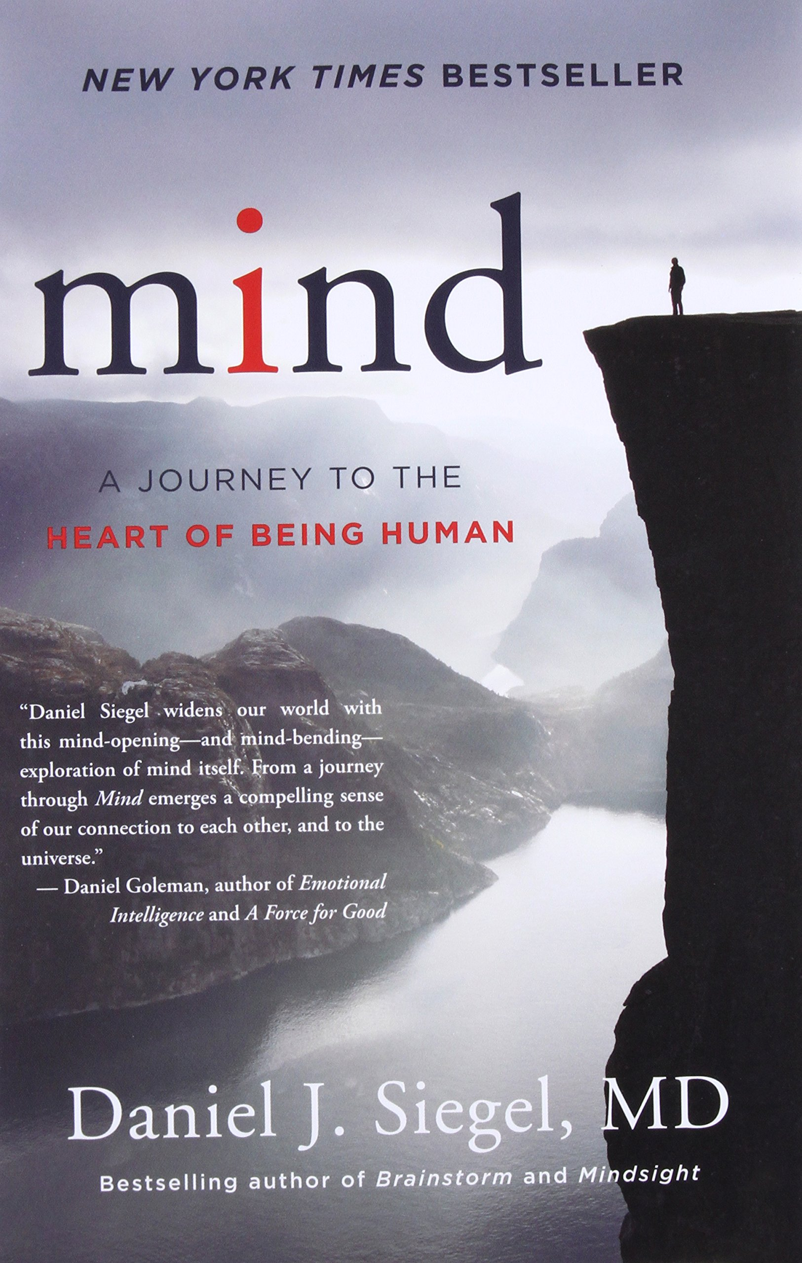 Mind: A Journey to the Heart of Being Human (Norton Series on Interpersonal  Neurobiology): Daniel J. Siegel M.D.: 9780393710533: Amazon.com: Books