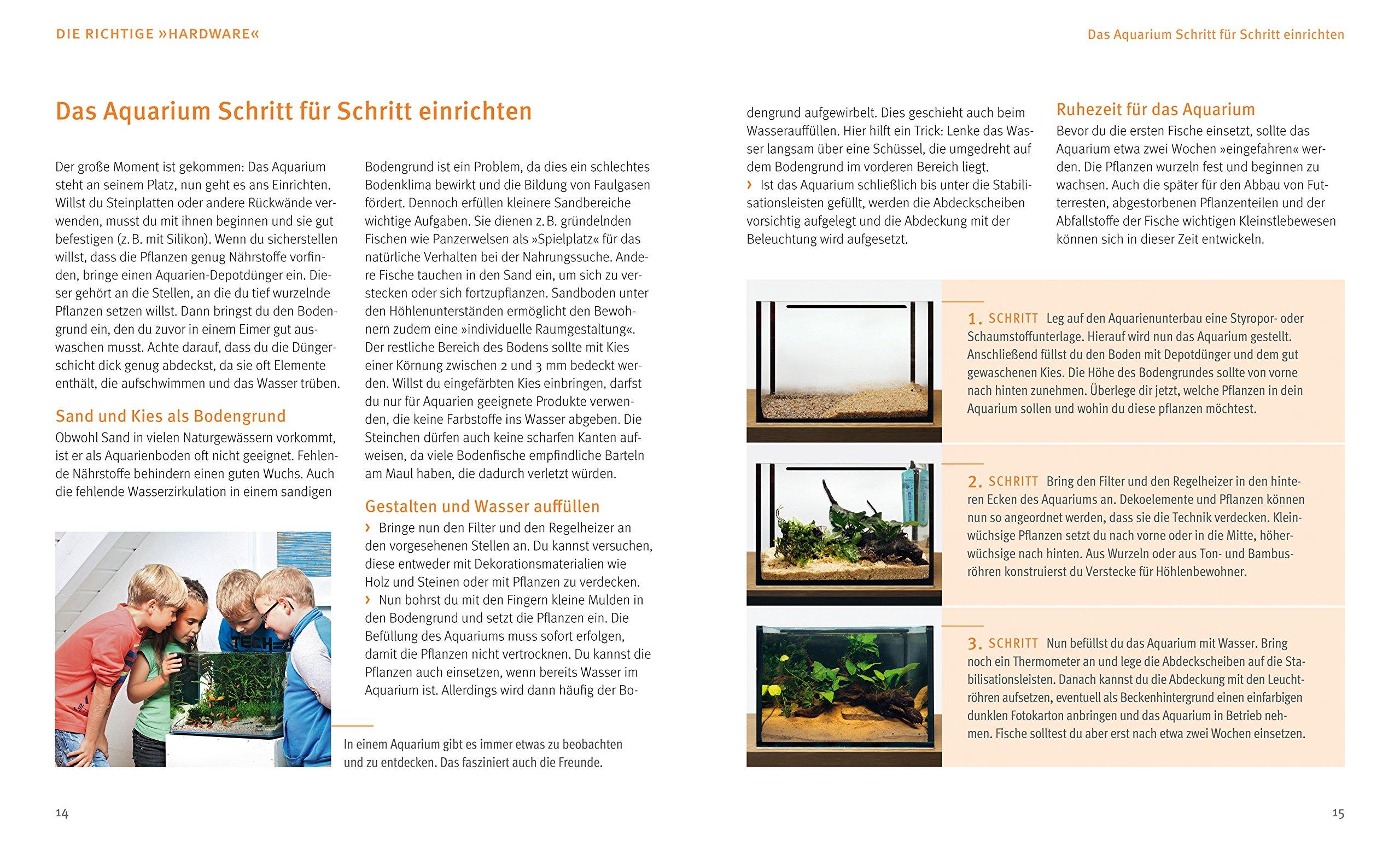 915il+2UfNL Frais De Aquarium Recifal Complet Concept