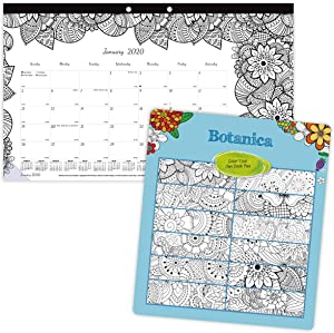 Blueline 2020 DoodlePlan Monthly Coloring Desk Pad Calendar, January - December, Botanica Designs, 17.75 x 10.875 Inches (C2917001-20)