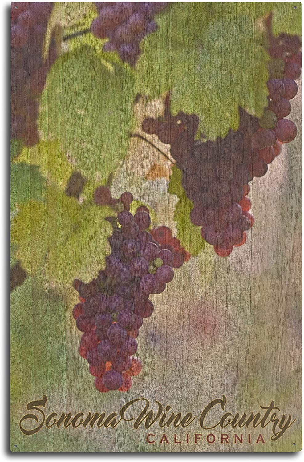 Lantern Press Sonoma Wine Country, California - Wine Grapes on Vine (10x15 Wood Wall Sign, Wall Decor Ready to Hang)