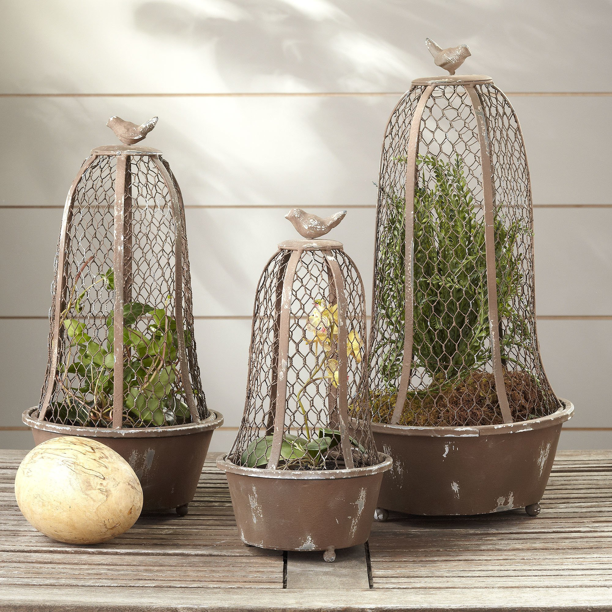 3 Piece Perch Wire Cloche Indoor Outdoor Terrarium Planter Set