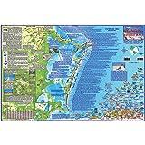 Amazon Com Cancun Riviera Maya Mexico Dive Map Laminated Poster