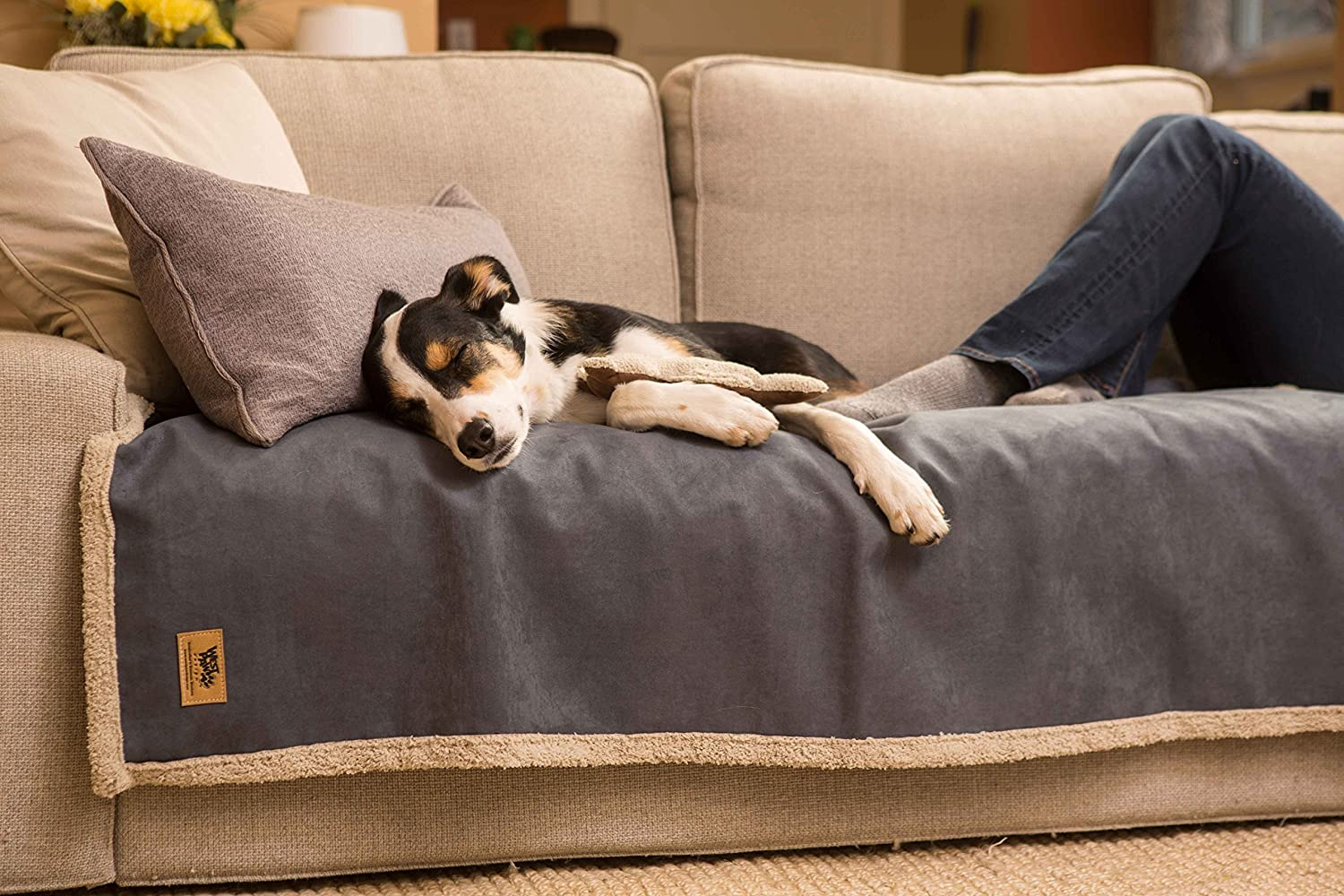 Amazon.com : West Paw Big Sky Dog Blanket And Throw, Faux Suede/Silky Soft  Fleece Pet Throw Blanket For Couch, Furniture Chair And Bed, Jade, ...