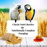Lafeber's Classic Nutri-Berries for Macaw