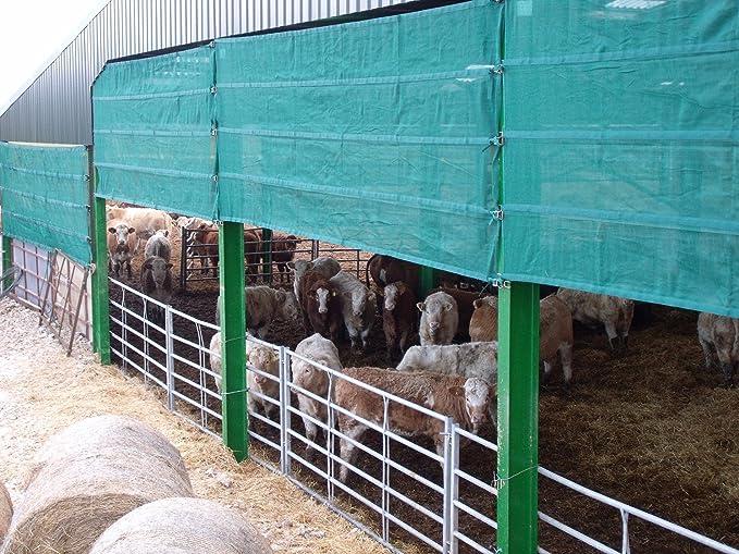 3 x cortavientos para cobertizos, Edificios de granja, ganado, almacenamiento, vaca y ganado graneros 1,5 m x 4,75 m Ancho: Amazon.es: Jardín