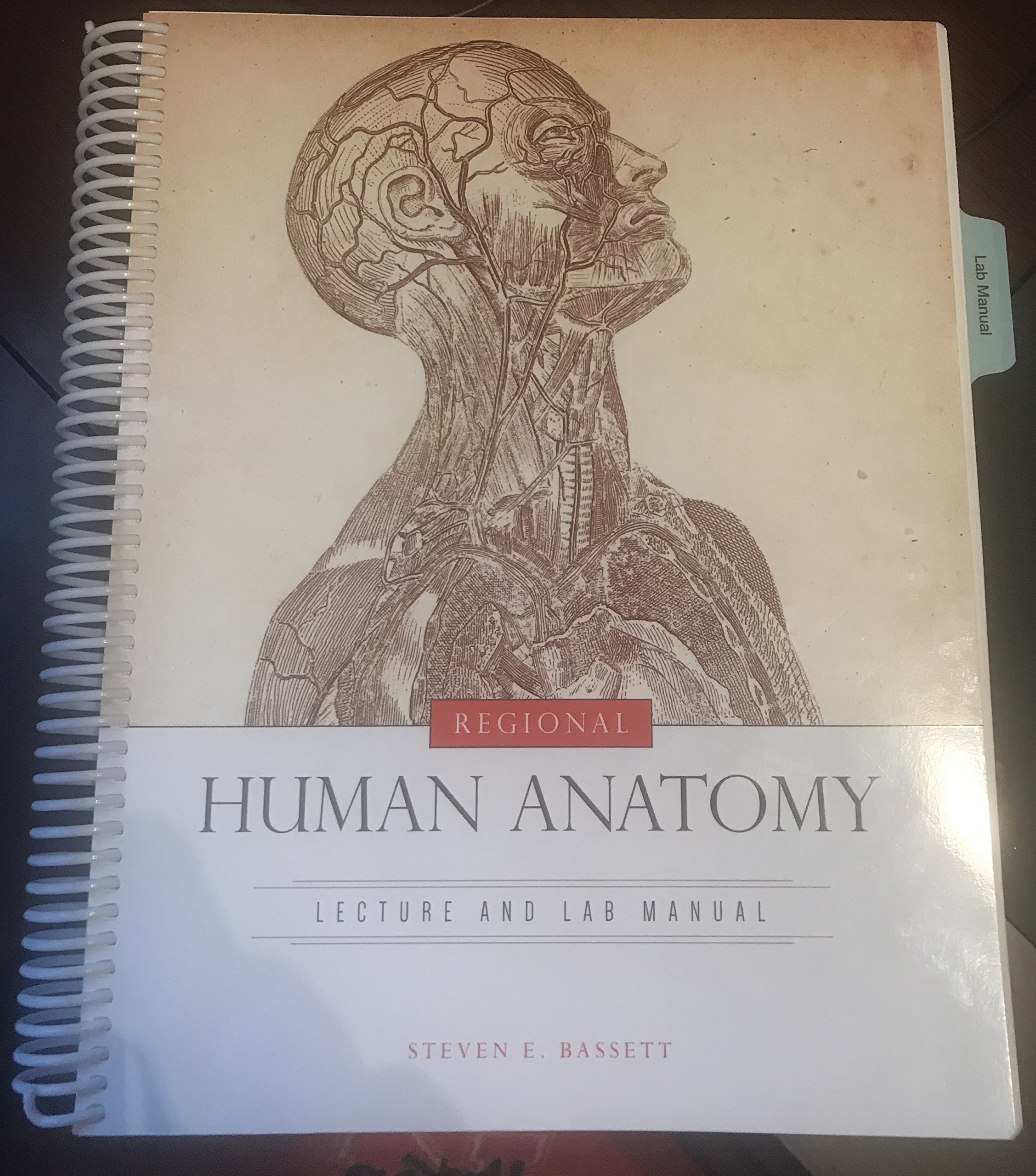 Human Anatomy Lecture And Lab Material Steven E Basset