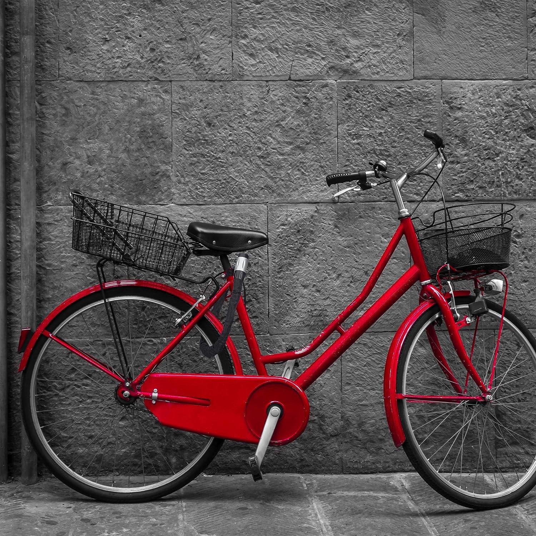 Relaxdays Candado de Cadena Stable, Antirrobo para Bicicletas y ...