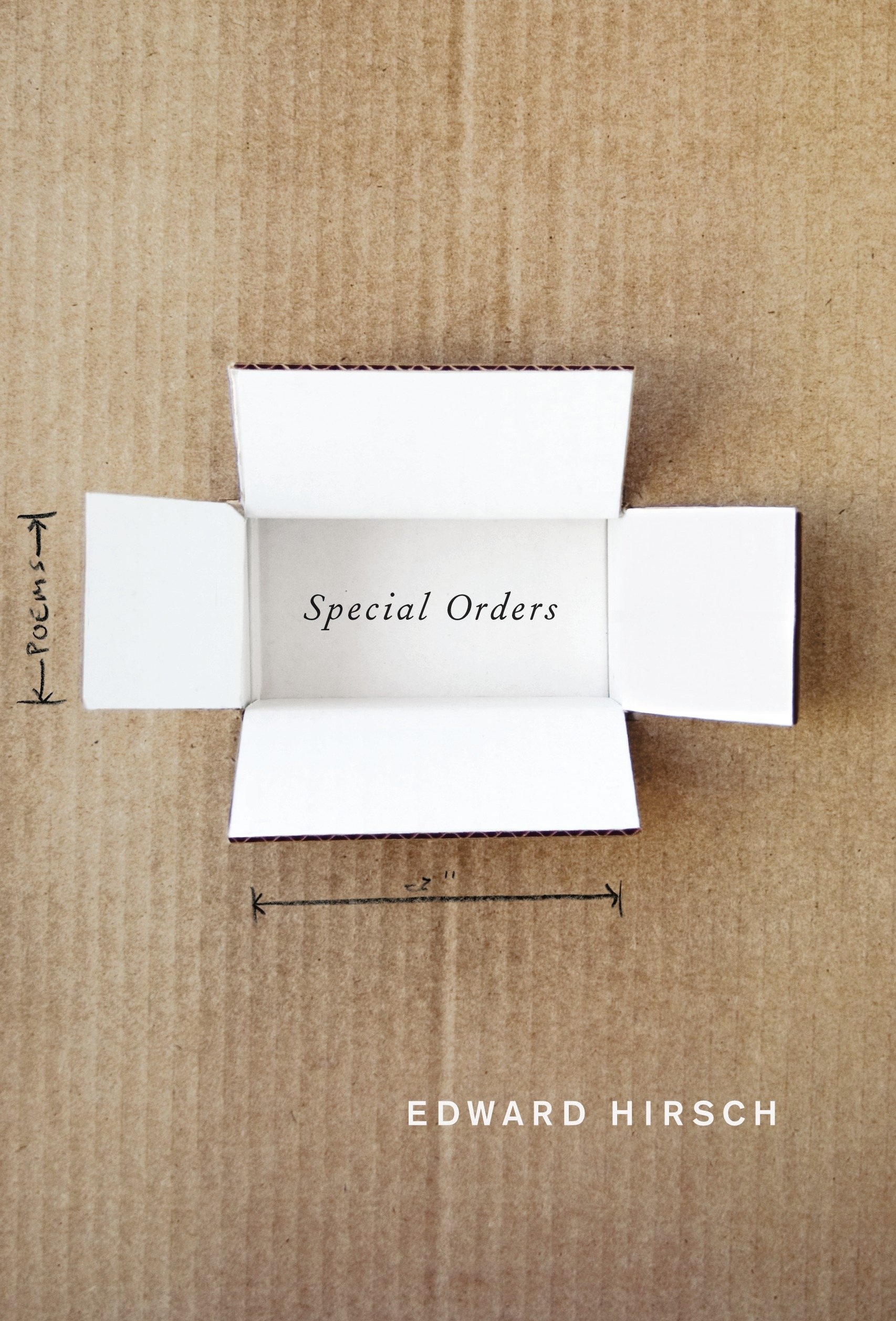 Special Orders: Poems PDF