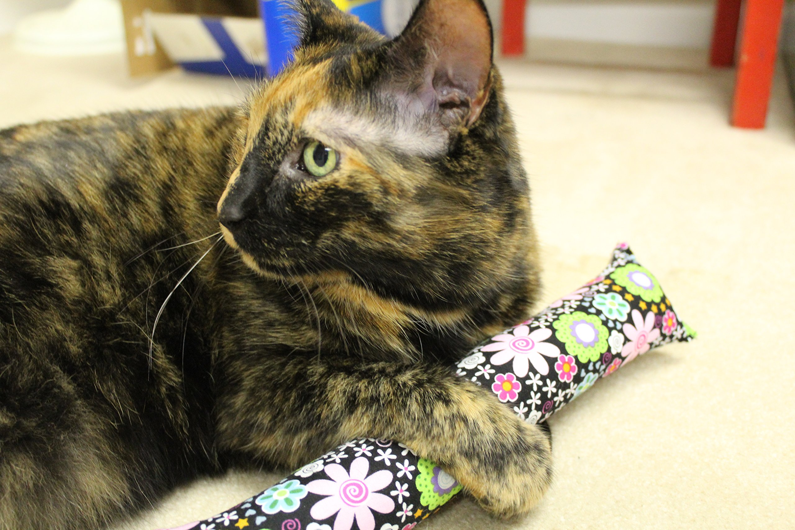 11'' Kitty Stick Catnip Cat Toy (Pack of 4), Assorted Colors & Patterns by Kitty Kandy (Image #3)