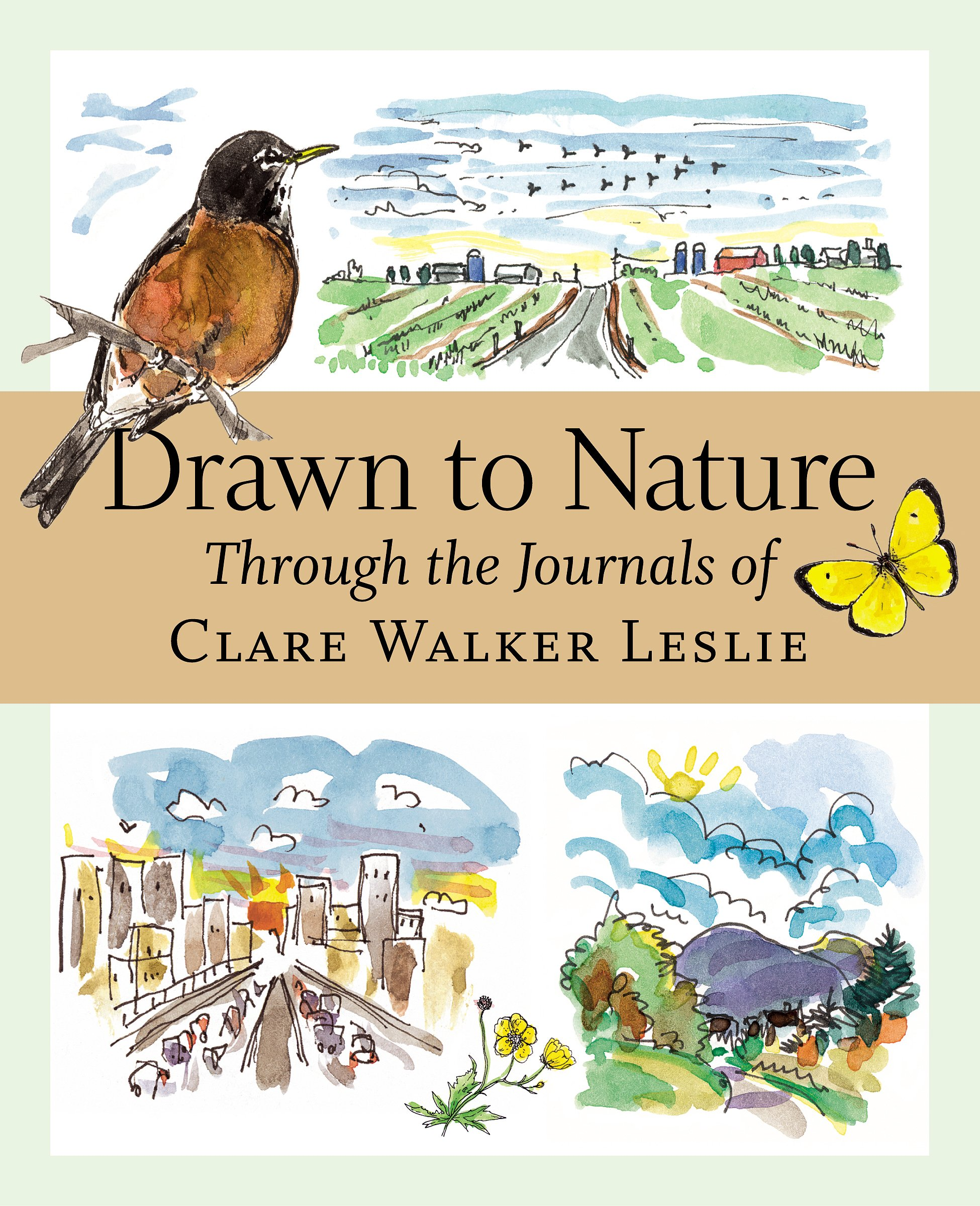 Drawn to Nature: Through the Journals of Clare Walker Leslie: Clare Walker  Leslie: 0037038176148: Amazon.com: Books