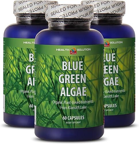 Binoid Premium Elderberry Gummies for Immune System Support Made with Natural Ingredients Gelatin Free, Gluten Free, Dairy Free, Non-GMO, Soy Free